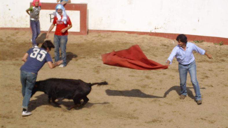 Despedida de soltero con capea en Salamanca
